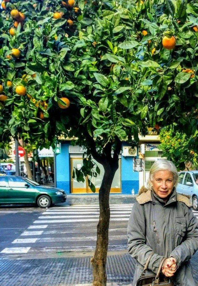 arance albero e io sotto